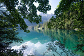 Lake Tovel in the Brenta Dolomites — Stock Photo