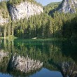 Stock Photo: Lake Tovel in BrentDolomites