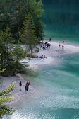 Lake Tovel in the Brenta Dolomites — Stock Photo