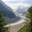 Mer de glace — Stock Photo