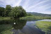 Lake of Varese — Stock Photo