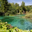 Plitvice — Stock Photo