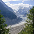 Stock Photo: Mer de glace