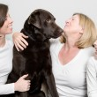 Family with their Dog — Stock Photo