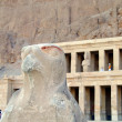Stock Photo: Hatshepsut temple 14