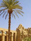 Karnak temple 02 — Stock Photo