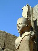 Karnak temple statue 04 — Stock Photo