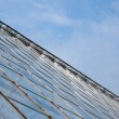 Abstract Greenhouse — Stock Photo #2299482