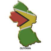 Guyana metal pin badge — Stock Photo