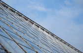 Abstract Greenhouse — Stock Photo
