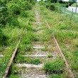 Abandoned Railway — Stock Photo