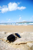 Trendy sunglasses on beach — Stock Photo