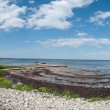 Coastline panorama — Stock Photo
