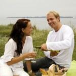 Romantic picnic with wine — Stock Photo #2492434