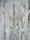 łuszcząca się farba tekstura — Zdjęcie stockowe