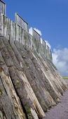 Swedish trelleborg fortification — Stock Photo