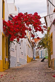 Portuguese Back Street — Stock Photo