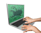 Computer Bug — Stock Photo