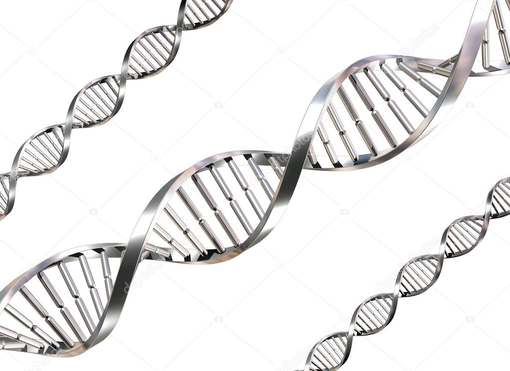 Isolated illustration of double helix DNA strands  Foto de Stock   #2220649