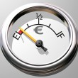 Euro gauge — Stock Photo #2232224