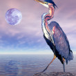Royalty-Free Stock Photo: Heron