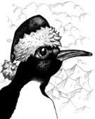 Sr. pingüino — Foto de Stock