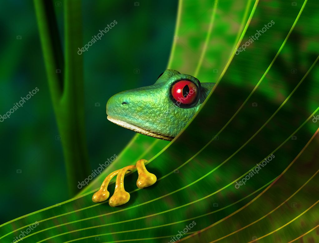 Illustration of an endangered red eyed tree frog peering from behind a leaf in the rainforest  Stock Photo #2232142