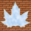 Maple leaf window — Stock Photo #2277158