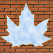 Maple leaf window — Stock Photo