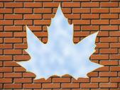 Maple leaf window — Stock Photo