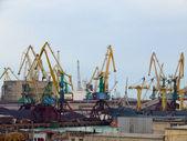 Cargo cranes — Stock Photo