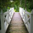 Wooden bridge — Stock Photo #2395634