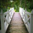 Royalty-Free Stock Photo: Wooden bridge