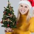 Woman with christmas tree — Stock Photo #2457396
