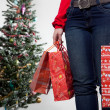Woman with christmas presents 2 - 图库照片