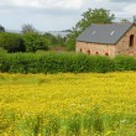 Farm House — Stock Photo #2209282