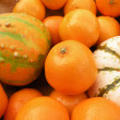 Stock Photo: Clementines and decorative pumpkins