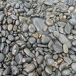 Stock Photo: Pebble Beach