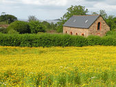 Farm House — Stock Photo