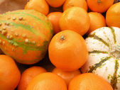 Clementines and decorative pumpkins — Stock Photo