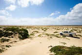 4x4 truck in dunes — Stock Photo