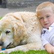 Retriever and boy - Stock Photo