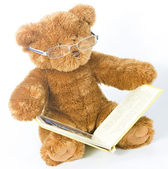 Teddy bear reading a book — Stock Photo