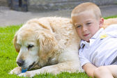 Retriever and boy — Stock Photo