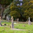 Stock Photo: Churchyard