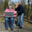 Grandparents with laptop — Stock Photo
