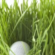 Golfball — Stock Photo #2224533