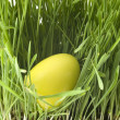Yellow easter-egg — Stock Photo