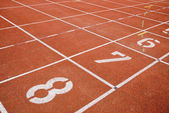 Athletics-tracks and nummers — Zdjęcie stockowe
