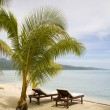Tropical exotic beach — Stock Photo